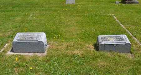 BALL, JOHN A. - Branch County, Michigan | JOHN A. BALL - Michigan Gravestone Photos