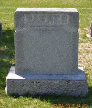 BARNES, FAMILY - Branch County, Michigan   FAMILY BARNES - Michigan Gravestone Photos