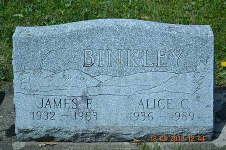 BINKLEY, ALICE C. - Branch County, Michigan | ALICE C. BINKLEY - Michigan Gravestone Photos