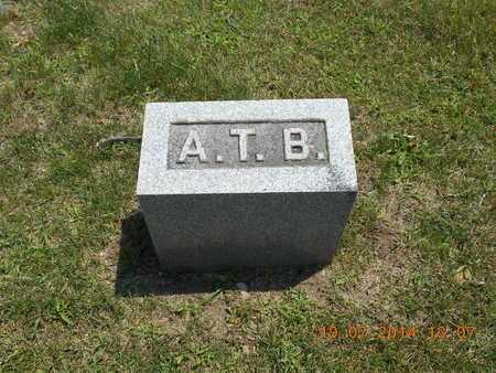 TOWER BISBEE, AMANTHA - Branch County, Michigan | AMANTHA TOWER BISBEE - Michigan Gravestone Photos