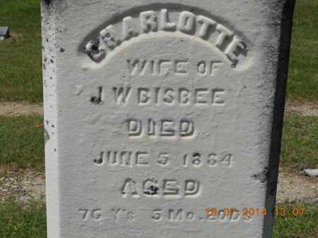 BISBEE, CHARLOTTE - Branch County, Michigan | CHARLOTTE BISBEE - Michigan Gravestone Photos