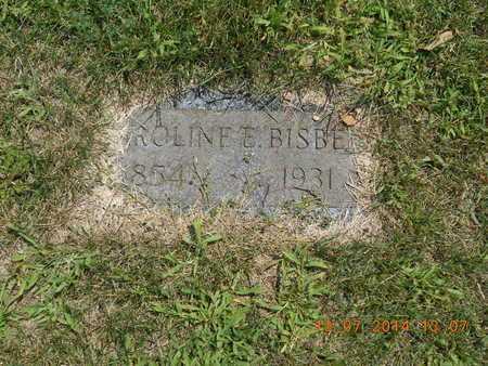 BISBEE, CAROLINE E. - Branch County, Michigan   CAROLINE E. BISBEE - Michigan Gravestone Photos
