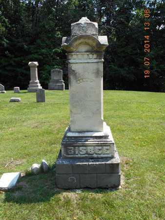 BISBEE, FAMILY - Branch County, Michigan   FAMILY BISBEE - Michigan Gravestone Photos