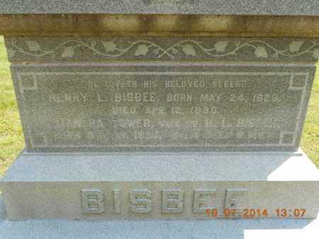 BISBEE, AMANTHA - Branch County, Michigan | AMANTHA BISBEE - Michigan Gravestone Photos