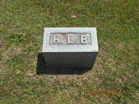 BISBEE, HENRY L. - Branch County, Michigan | HENRY L. BISBEE - Michigan Gravestone Photos