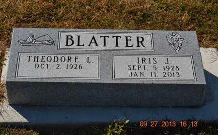 BLATTER, THEODORE LADEAN - Branch County, Michigan | THEODORE LADEAN BLATTER - Michigan Gravestone Photos