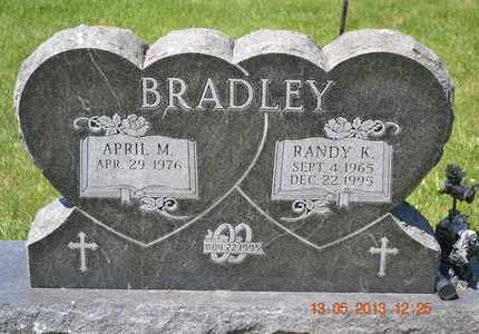 BRADLEY, RANDY K. - Branch County, Michigan | RANDY K. BRADLEY - Michigan Gravestone Photos