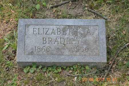 BRADLEY, ELIZABETH A. - Branch County, Michigan | ELIZABETH A. BRADLEY - Michigan Gravestone Photos