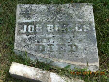 BRIGGS, JOB - Branch County, Michigan | JOB BRIGGS - Michigan Gravestone Photos