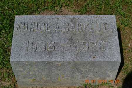 CARLETON, EUNICE - Branch County, Michigan   EUNICE CARLETON - Michigan Gravestone Photos