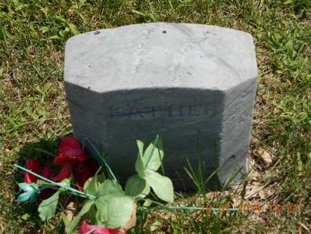 CARPENTER, C.L. - Branch County, Michigan | C.L. CARPENTER - Michigan Gravestone Photos