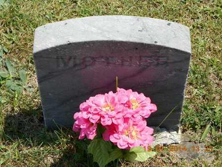 CARPENTER, ELEANOR D. - Branch County, Michigan | ELEANOR D. CARPENTER - Michigan Gravestone Photos