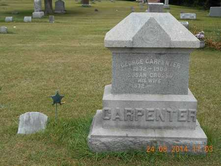 CARPENTER, FAMILY - Branch County, Michigan | FAMILY CARPENTER - Michigan Gravestone Photos