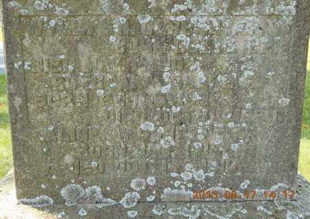 CARPENTER, WYLLYS N. - Branch County, Michigan | WYLLYS N. CARPENTER - Michigan Gravestone Photos