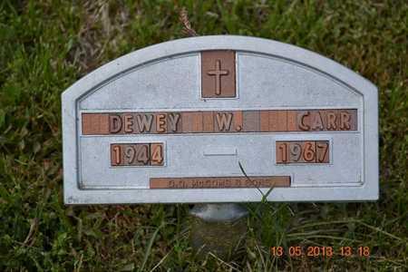 CARR, DEWEY W. - Branch County, Michigan | DEWEY W. CARR - Michigan Gravestone Photos