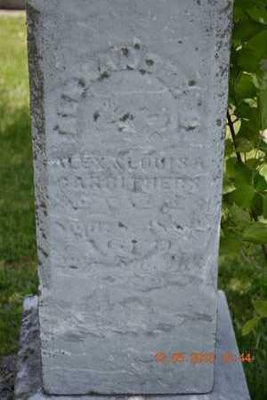 CARRITHERS, ALEXANDER B.(CLOSEUP) - Branch County, Michigan | ALEXANDER B.(CLOSEUP) CARRITHERS - Michigan Gravestone Photos