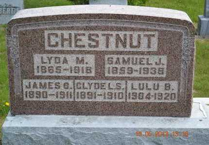 CHESTNUT, CLYDE L.S. - Branch County, Michigan | CLYDE L.S. CHESTNUT - Michigan Gravestone Photos