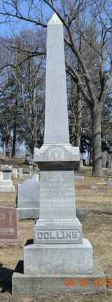 COLLINS, FAMILY - Branch County, Michigan | FAMILY COLLINS - Michigan Gravestone Photos