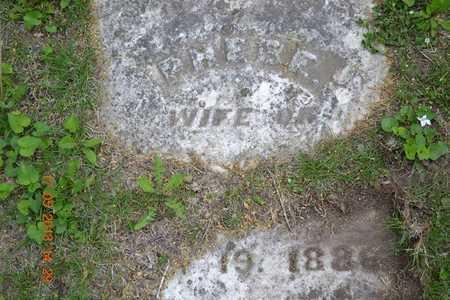 CULVER, PHEBE(CLOSEUP) - Branch County, Michigan   PHEBE(CLOSEUP) CULVER - Michigan Gravestone Photos