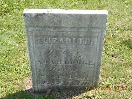 DODGE, ELIZABETH - Branch County, Michigan   ELIZABETH DODGE - Michigan Gravestone Photos