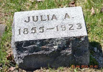 DUBENDORF, JULIA ANN - Branch County, Michigan | JULIA ANN DUBENDORF - Michigan Gravestone Photos