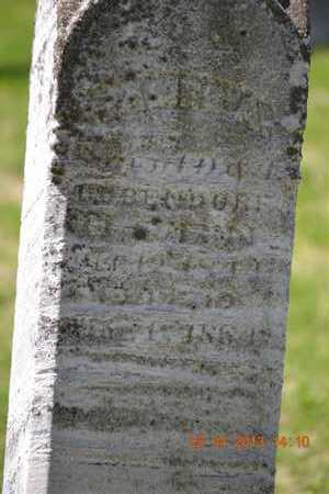 DUBENDORF, JAMES ALBERT - Branch County, Michigan | JAMES ALBERT DUBENDORF - Michigan Gravestone Photos