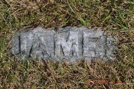 DUNLAP, JAMES W. - Branch County, Michigan   JAMES W. DUNLAP - Michigan Gravestone Photos