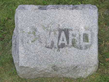 EARL, EDWARD - Branch County, Michigan | EDWARD EARL - Michigan Gravestone Photos