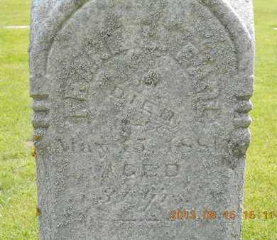 EARL, FRANK L. - Branch County, Michigan | FRANK L. EARL - Michigan Gravestone Photos