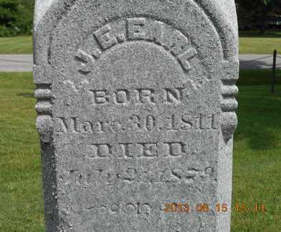 EARL, J.E. - Branch County, Michigan | J.E. EARL - Michigan Gravestone Photos