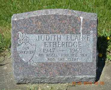 ETHERIDGE, JUDITH ELAINE - Branch County, Michigan | JUDITH ELAINE ETHERIDGE - Michigan Gravestone Photos