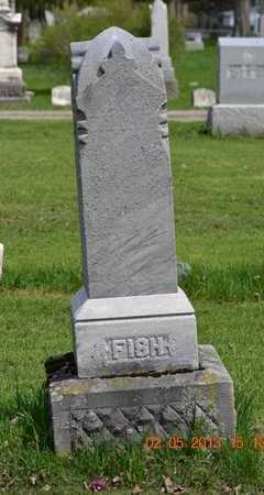 GEER FISH, PLUMEA - Branch County, Michigan | PLUMEA GEER FISH - Michigan Gravestone Photos