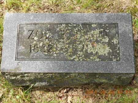FORD, ZOE B. - Branch County, Michigan | ZOE B. FORD - Michigan Gravestone Photos