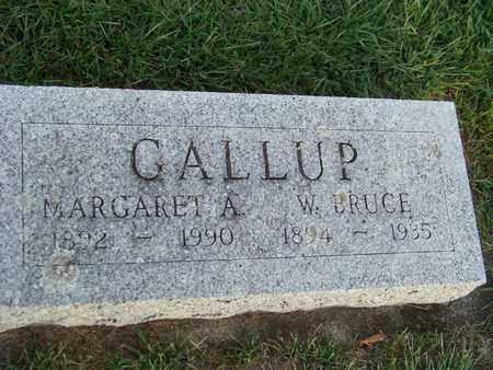 GALLUP, WILLARD - Branch County, Michigan | WILLARD GALLUP - Michigan Gravestone Photos