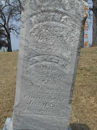GEORGE, JAMES H. - Branch County, Michigan | JAMES H. GEORGE - Michigan Gravestone Photos