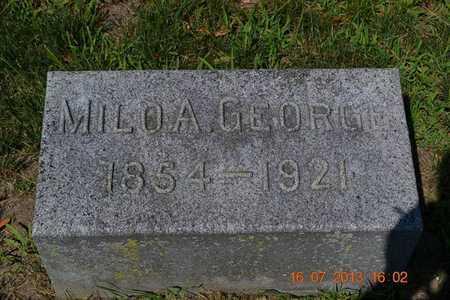 GEORGE, MILO - Branch County, Michigan | MILO GEORGE - Michigan Gravestone Photos