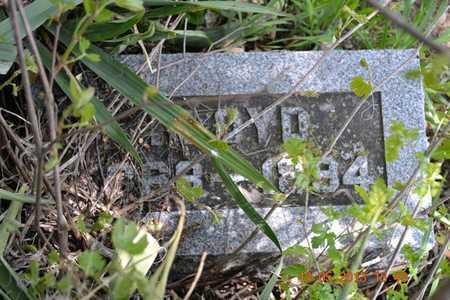 GOODLIFFE, FLOYD - Branch County, Michigan   FLOYD GOODLIFFE - Michigan Gravestone Photos