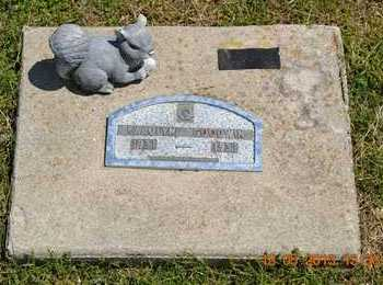 GOODWIN, CAROLYN - Branch County, Michigan | CAROLYN GOODWIN - Michigan Gravestone Photos