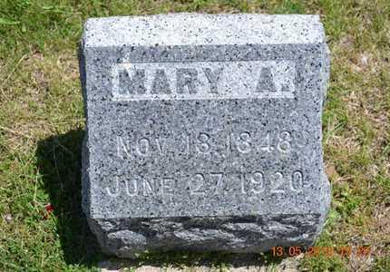 GOODWIN, MARY A. - Branch County, Michigan   MARY A. GOODWIN - Michigan Gravestone Photos