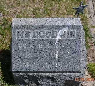 GOODWIN, WILLIAM - Branch County, Michigan   WILLIAM GOODWIN - Michigan Gravestone Photos