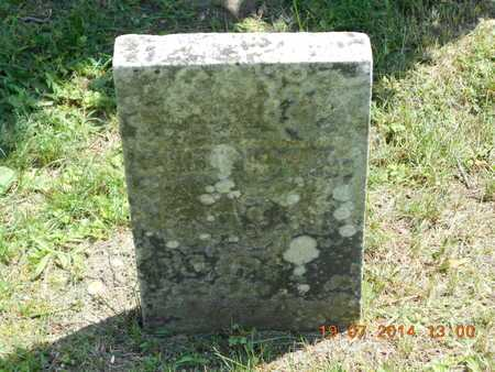 GOULD, ALBERT E. - Branch County, Michigan | ALBERT E. GOULD - Michigan Gravestone Photos