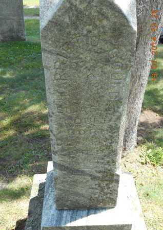 WELLS GOULD, HARRIET JANE - Branch County, Michigan | HARRIET JANE WELLS GOULD - Michigan Gravestone Photos