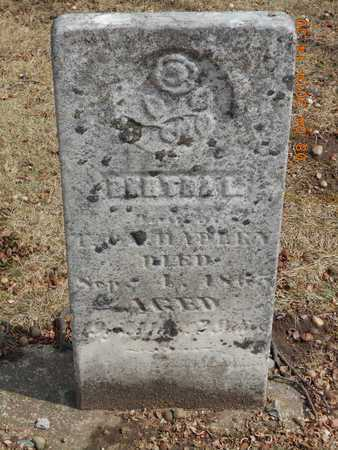 HADLEY, BERTHA L. - Branch County, Michigan | BERTHA L. HADLEY - Michigan Gravestone Photos