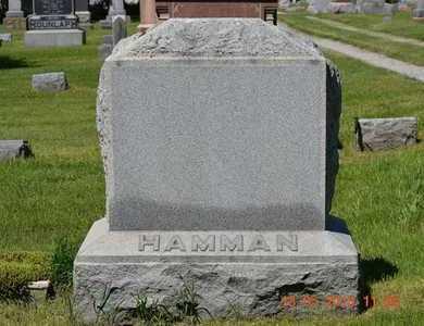HAMMAN, HENRY - Branch County, Michigan | HENRY HAMMAN - Michigan Gravestone Photos