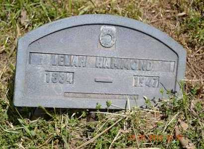 HAMMOND, LELAH - Branch County, Michigan | LELAH HAMMOND - Michigan Gravestone Photos