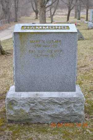 HAMMOND, MARTIN LUTHER - Branch County, Michigan | MARTIN LUTHER HAMMOND - Michigan Gravestone Photos