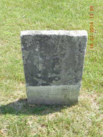 RICHARDSON HARRINGTON, ANNA - Branch County, Michigan | ANNA RICHARDSON HARRINGTON - Michigan Gravestone Photos