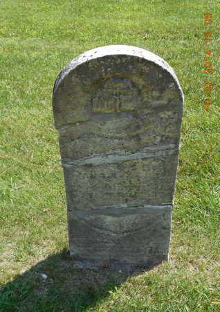 HARRINGTON, OTIS - Branch County, Michigan | OTIS HARRINGTON - Michigan Gravestone Photos