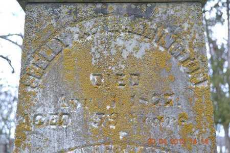 HARRINGTON, SHELBY A. - Branch County, Michigan | SHELBY A. HARRINGTON - Michigan Gravestone Photos
