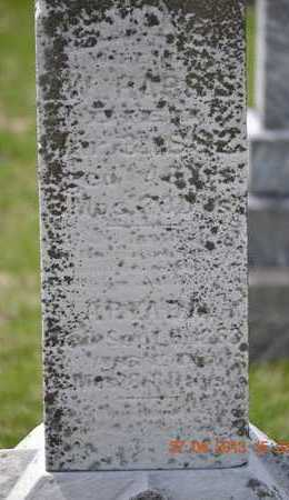 HARRIS, EMILY(CLOSEUP) - Branch County, Michigan | EMILY(CLOSEUP) HARRIS - Michigan Gravestone Photos